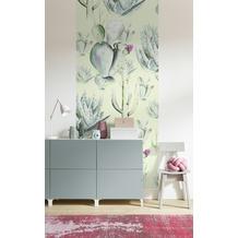 "Komar Digitaldruck Fototapete auf Vlies""Cactus Green Panel"" 100 x 250 cm"