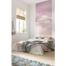 "Komar Digitaldruck Fototapete auf Vlies""Cloud Wire Panel"" 100 x 250 cm"