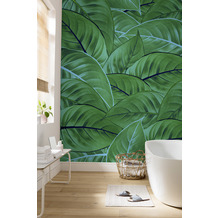 "Komar Digitaldruck Fototapete auf Vlies""Jungle Leaves"" 200 x 250 cm"