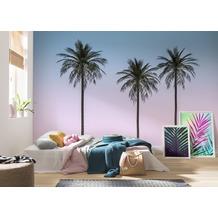 "Komar Digitaldruck Fototapete auf Vlies""Skyhigh"" 400 x 250 cm"