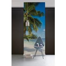 "Komar Digitaldruck Vliestapete ""Coconut Bay"" 100 x 280 cm"