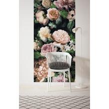 "Komar Digitaldruck Vliestapete ""Victoria Black Panel"" 100 x 250 cm"