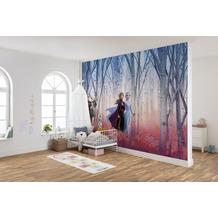 "Komar Fototapete ""Frozen Friends forever 368 x 254 cm"