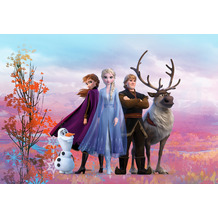 "Komar Fototapete ""Frozen Iconic 368 x 254 cm"