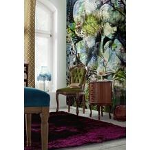 Komar Fototapete Aphrodite´s Garden 184 x 254 cm
