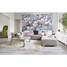 Komar Fototapete Magnolia 368 x 254 cm