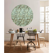 Komar Greenery 125 x 125 cm Fototapete Dots