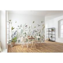 "Komar home Vlies Fototapete ""Breeze"" 350 x 250 cm"