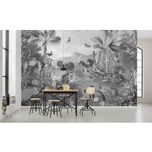 "Komar home Vlies Fototapete ""Flora and Fauna"" 350 x 250 cm"