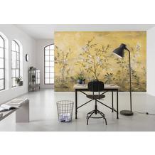 """Komar home Vlies Fototapete """"Mandarin"""" 368 x 248 cm"""