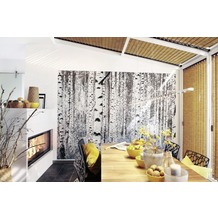 Komar Vlies Fototapete munich design book - Woods 400 x 270 cm