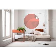 Komar Roselux 125 x 125 cm Fototapete Dots