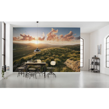 "Komar Vlies Fototapete ""Abenteuerland"" 400 x 280 cm"