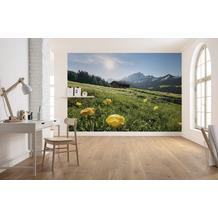 "Komar Vlies Fototapete ""Alpenglück"" 400 x 280 cm"