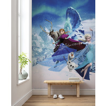 Komar Vlies Fototapete Disney Frozen Elsas Magic 200 x 280 cm