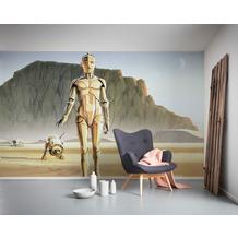 Komar Vlies Fototapete Star Wars Classic RMQ Droids 500 x 250 cm
