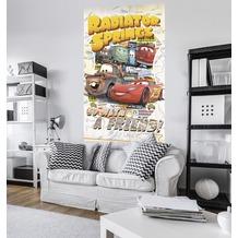 """Komar Vlies Panel """"Cars Take The Open Road"""" 120 x 200 cm"""