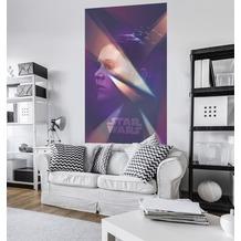 """Komar Vlies Panel """"Star Wars Female Leia"""" 120 x 200 cm"""