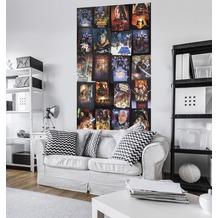 "Komar Vlies Panel ""Star Wars Posters Collage"" 120 x 200 cm"