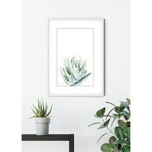 Komar Wandbild Aloe Watercolor 30 x 40 cm
