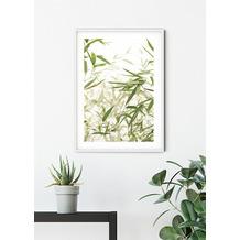 Komar Wandbild Bamboo Leaves 30 x 40 cm