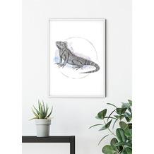 Komar Wandbild Iguana Watercolor 30 x 40 cm
