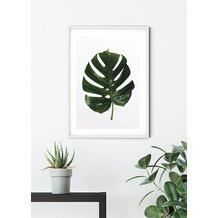 Komar Wandbild Monstera Leaf 30 x 40 cm