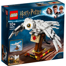 LEGO® Harry Potter™ 75979 Hedwig™