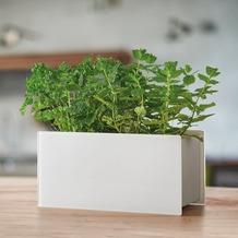 Leonardo Kräuterbox weiß