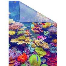 Lichtblick Fensterfolie selbstklebend, Sichtschutz, Aquarium - Bunt Breite: 100 cm, Länge: 100 cm