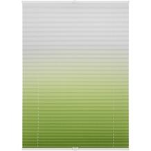 Lichtblick Plissee Klemmfix, ohne Bohren, verspannt, Farbverlauf  Grün Weiß Breite: 100 cm