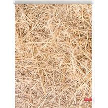 Lichtblick Rollo Klemmfix, ohne Bohren, blickdicht, Stroh - Braun Breite: 100 cm