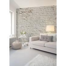 Livingwalls Fototapete Designwalls Brick White grau weiß DD118785 3,50 m x 2,55 m
