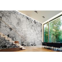 Livingwalls Fototapete Designwalls Cement Crack grau schwarz weiß DD118768 3,50 m x 2,55 m