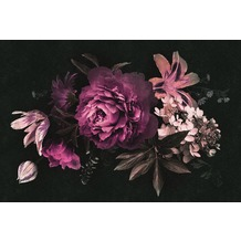 Livingwalls Fototapete Walls by Patel Rosentapete Drama Queen rosa schwarz violett Vliestapete glatt 4,00 m x 2,70 m