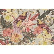 Livingwalls Fototapete Walls by Patel Dschungeltapete Exotic Birds beige rosa rot Vliestapete glatt 4,00 m x 2,70 m