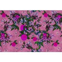 Livingwalls Fototapete Walls by Patel Blumentapete Grapefruit Tree rosa violett Vliestapete glatt 4,00 m x 2,70 m