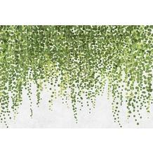 Livingwalls Fototapete Walls by Patel Efeu Tapete Hanging Garden grau grün Vliestapete glatt 4,00 m x 2,70 m