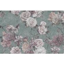Livingwalls Fototapete Walls by Patel Rosentapete Sleeping Beauty rosa türkis Vliestapete glatt 4,00 m x 2,70 m
