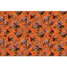 Livingwalls Fototapete Walls by Patel Blumentapete Wild Roses gelb orange rot Vliestapete glatt 4,00 m x 2,70 m