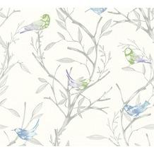Livingwalls Vliestapete Colibri Tapete mit Vögeln weiß grün grau 366231 10,05 m x 0,53 m