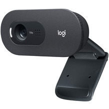 Logitech® C505 HD Webcam