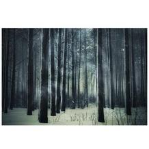 Apalis Vlies FotoTapete No.308 Mysthischer Winterwald Foto Tapeten 120x80cm
