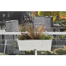 merxx Blumenkasten weiß, 60x19x19 cm