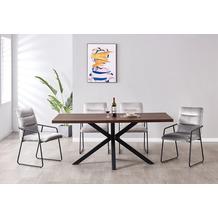 Möbilia Essgruppe Stuhl mit Samtbezug, Tischplatte MDF mit Nussbaumdekor, Gestell jeweils pulverbeschichteter Stahl Stuhlbezug hellgrau, Tischplatte braun, Gestell jeweils matt schwarz 17020013