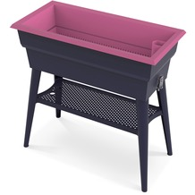 NOOR Hochbeet Calipso 81x38x100cm 7 Ltr. Wasserspeicher Farbe rosa
