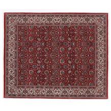 Oriental Collection Bidjar Teppich Bukan 207 x 256 cm