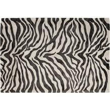 Padiro Teppich Sinai 125 Elfenbein / Schwarz 120cm x 170cm