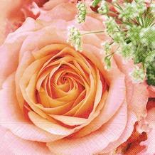 Paper+Design Servietten Tissue Big rose 25 x 25 cm 20er