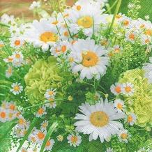 Paper+Design Servietten Tissue Summer bouquet 33 x 33 cm 20er
